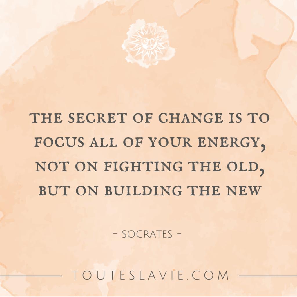 Focus | Toutes La Vie